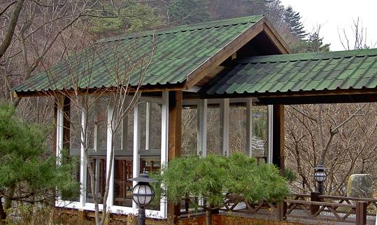 Однувилла дом Зеленый